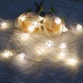 2000mm 20 لمبات LED أضواء سلسلة واضحة