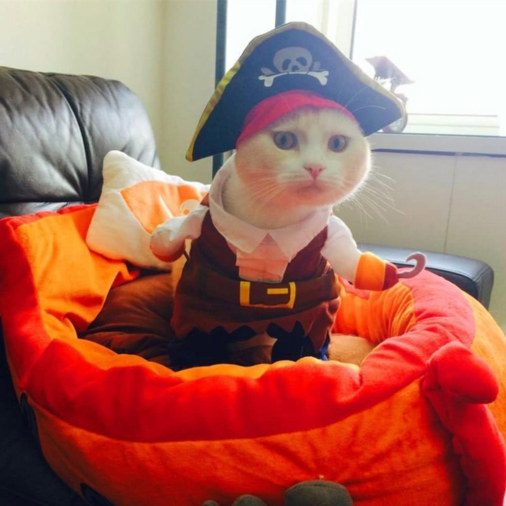 Funny Pet Dog Clothes For Small Dog Costume Pirate Suit