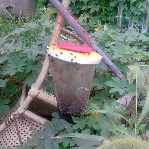 環境保護の味のないフライトラップ昆虫キラー