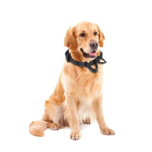 Collier de boucle à dégagement rapide en nylon Tactic Hunt Dog Collar