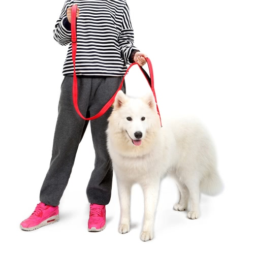 Double Handle Pet Dog Leash Reflective 1.5m/ 5ft Long Nylon Material Comfortable Padded Handles for Large &amp; Medium Dogs Daily WalkHome &amp; Garden<br>Double Handle Pet Dog Leash Reflective 1.5m/ 5ft Long Nylon Material Comfortable Padded Handles for Large &amp; Medium Dogs Daily Walk<br>