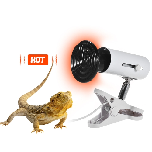 3pcs/ Set 50W Heat Emitter Ceramic Lamp Bulb &amp; Lamp Holder &amp; Temperature Controller for Reptiles TerrariumHome &amp; Garden<br>3pcs/ Set 50W Heat Emitter Ceramic Lamp Bulb &amp; Lamp Holder &amp; Temperature Controller for Reptiles Terrarium<br>