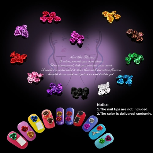 1Set 3D Nail Art Dried Flowers 12 Colors Aluminum Flowers for Nail Tips Fingers Decoration Flowers with Storage BoxHealth &amp; Beauty<br>1Set 3D Nail Art Dried Flowers 12 Colors Aluminum Flowers for Nail Tips Fingers Decoration Flowers with Storage Box<br>
