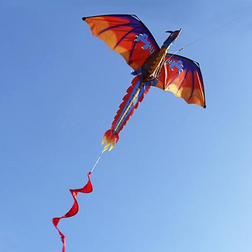 140cm x 120cm / 55 x 47 Inch Dragon Cervo volante singolo linea cervo volante con coda 100m linea di volo per i bambini Adulti