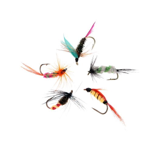 Lixada 10pcs Fly Fishing Hooks Carbon Steel Fly Fishing Lure Set Artificial bait with BoxSports &amp; Outdoor<br>Lixada 10pcs Fly Fishing Hooks Carbon Steel Fly Fishing Lure Set Artificial bait with Box<br>