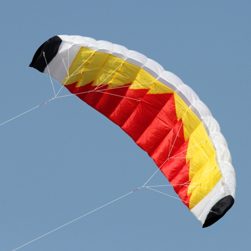 79 x 27.5 Large Dual Line Stunt Parafoil Kite Outdoor Sports Fun Toy with 30M LineSports &amp; Outdoor<br>79 x 27.5 Large Dual Line Stunt Parafoil Kite Outdoor Sports Fun Toy with 30M Line<br>