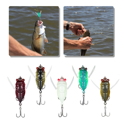 5PCS Insect Lure Bait Hard Cicada Fishing Lure Top Water Bait Kit Fishing Tackle Bass Snakehead Killer with Treble HooksSports &amp; Outdoor<br>5PCS Insect Lure Bait Hard Cicada Fishing Lure Top Water Bait Kit Fishing Tackle Bass Snakehead Killer with Treble Hooks<br>