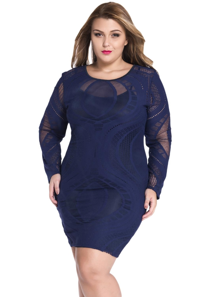 Lace Illusion Long Sleeves Plus Size Bodycon Dress
