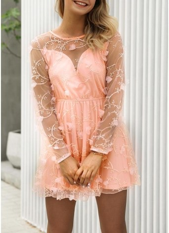 Lace Sheer Mesh Bordado Appliqué Vestido O-Neck Mangas Compridas Mini Vestido