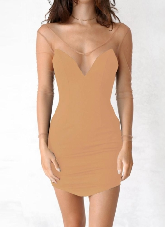 Sexy Solid Semi-sheer Mesh Deep V Neck Backless Women's Bodycon Dress