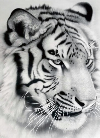NAIYUE 12 * 12 zoll / 30 * 30 cm DIY 5D Diamant Malerei Kit Weiß Tiger Muster Strass Mosaik Stickerei Kreuzstich Handwerk Hause Wand-dekor