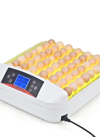 Anself 56 Eggs All-In-One Intelligent Full-automatic Egg Incubator Hatcher Transparent Eggs Hatching Machine for Chicken Duck Pigeons Quail Parrot   Turtle Bird Eggs Incubation with built-in Automatic Egg Turner Temperature Control Onekey LED Egg Candler Tester