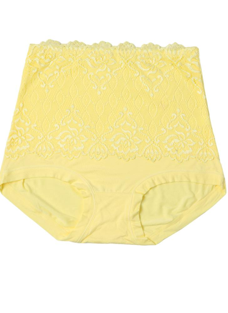 1f2580537041a Lace Panties High Waist Body Shaper Underwear