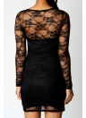Floral Lace Sheer Long Sleeve Women's Bodycon Mini Dress