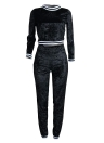 Velvet Sweat Suits Sweatshirt Trousers Casual Two Pieces