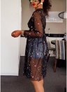 Women Sheer Mesh Dress Floral Embroidery See Through Long Sleeve A Line Dress Clubwear