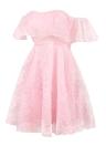 Off the Shoulder Ruffles Mesh Jacquard Backless Sleeveless Elegant Vintage Mini Dress