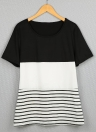 Color Block Striped Knitted Tee Tunics