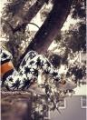 Women Leggings Tree Printed Elastic Waist