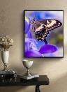 Luxus Diamant Malerei Schmetterling glänzend und Original
