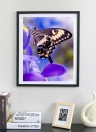 Luxury Diamond Painting Of Butterfly Shiny And Original