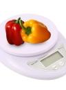 Mini escala electrónica de la plataforma para la comida de la cocina