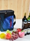 11L Portable Insulated Cooler Lunch Bag Heat Insulation Baby Bottle Food Bag with Adjustable Shoulder Strap
