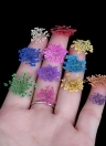 12 Colors Real Nail Dried Flowers Nail Art Decoration DIY Tips with Case Small Flowers