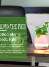Tokqi Flowerpot Colorful LED Night Light Smart Touch Music Piano Plant Lamp Rechargeable Wireless BT Bluetooth Speaker Gift