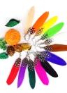 Largo pluma araña pendiente lindo cuelgan gotas mujeres chica moda joyas encanto accesorios regalo