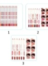 MENOW 12 Color Waterproof Multifunction No Blooming No Fade 3-in-1 Lipliner Lipstick Pencil Eyeliner Kit P14002 #046 #050 #051 #052 #053 #054 #055 #056 #057 #058 #59 #60