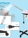 750W Facial Steamer Machine Spa Salon Tool pour Nettoyage de la peau à vapeur d'ozone
