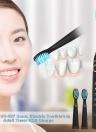 Seago SG-507 Brosse à dents électrique Sonic Brosse minuterie USB Charge rechargeable brosse à dents avec 2 têtes de rechange supplémentaires