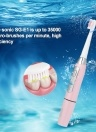 Seago Sonic Electric Toothbrush Waterproof 2 Brushing Modes Adult Whitening Tooth Brush With 3 Replacements Brush Heads Battery Operated