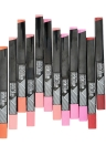 Expert 12 Colors Lip Rouge Waterproof Long-lasting Lipstick