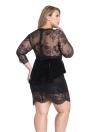 Schwarzer Spitze Mesh Insert Ärmeln Peplum Kleid