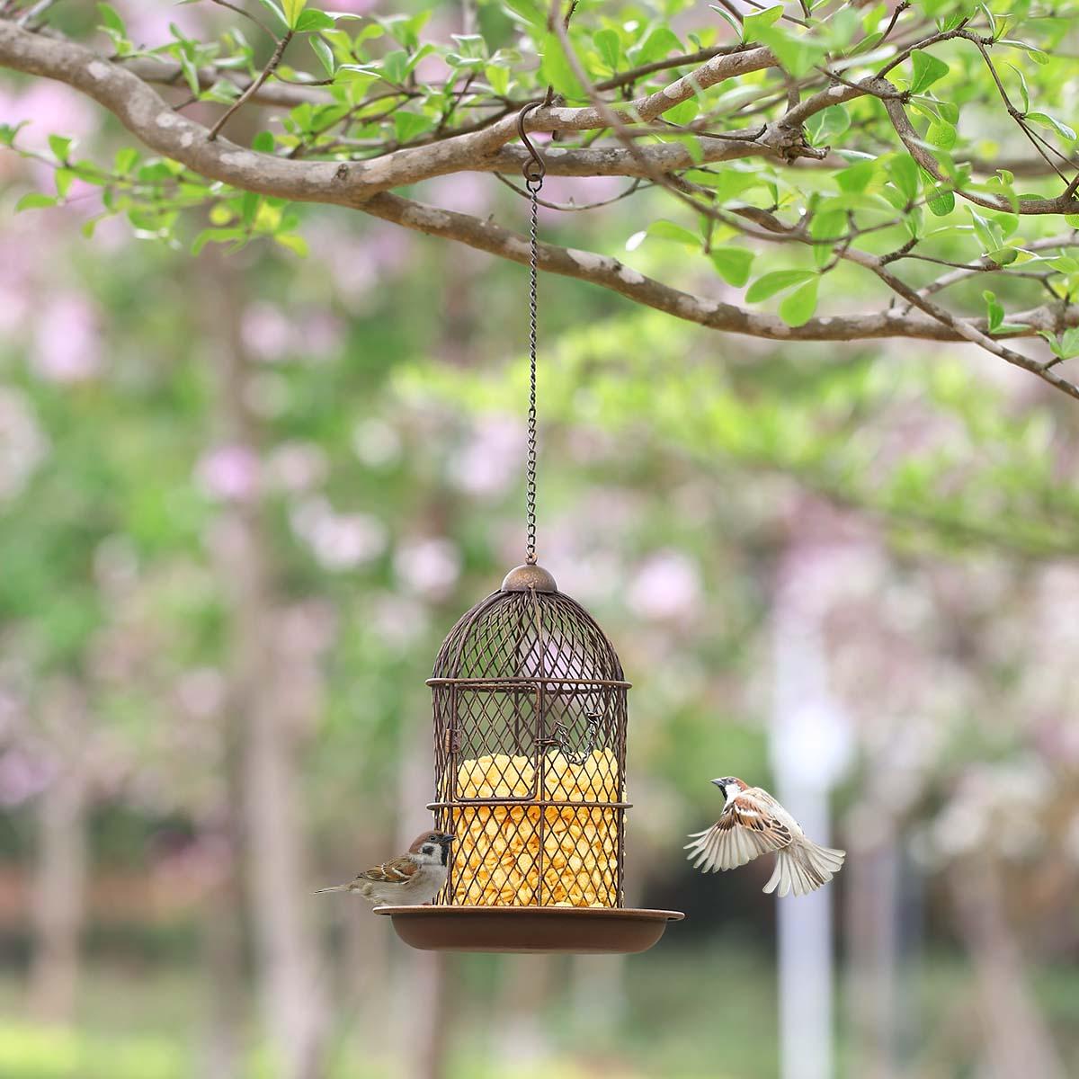 product bird jsp milo corn tweet food index wild lb feeder assorted ace species and