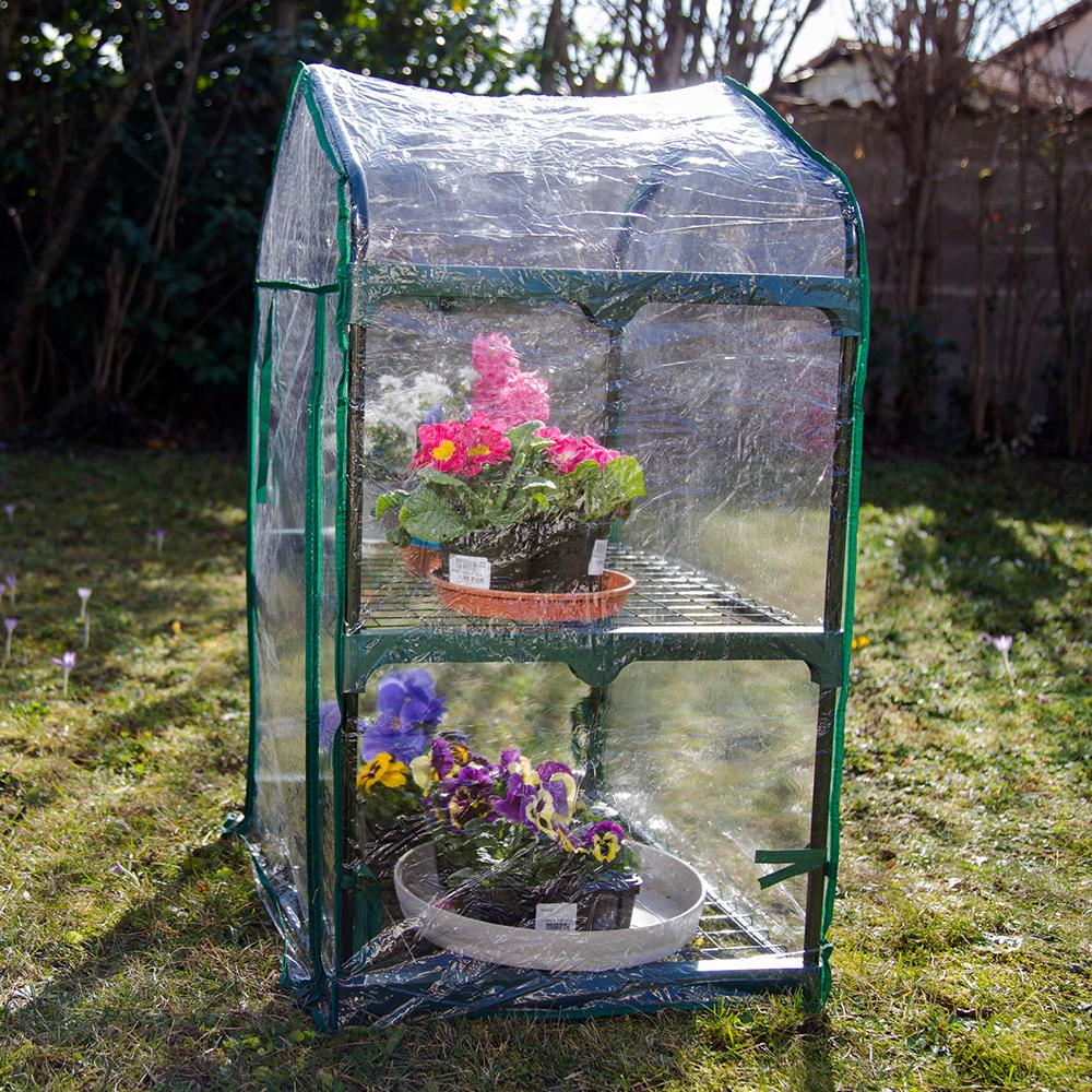 mini serre de jardin botanique 2 tag res 69x49x95cm. Black Bedroom Furniture Sets. Home Design Ideas