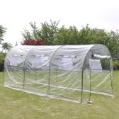 plantas de invernadero de plástico de invernadero invernadero Casa