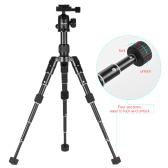 XILETU Kit Compact Mini Trépied de bureau Ultra avec Rotule pour Canon Nikon DSLR
