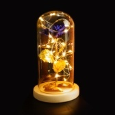 Glass Cover Internal Rose DIY Decoration Lamp Romantic LED Small Night Light Valentine
