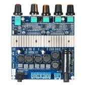 DC12V ~ 24V TPA3116D2 Subwoofer Digital Amplificador Junta