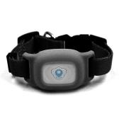 Intelligenz Wasserdichtes IP67 Mini Haustier GPS Tracking Tracker Halsband für Hund Katze AGPS LBS SMS Positionierung Haustiere Spur