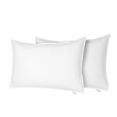 Htovila Zestaw 2 poduszek z białą pościelą Puchatka z gęsiego pierza i poduszkami wypełnionymi do domu - rozmiar Queen