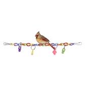 Kolorowe gryzmoły żuć Bite Toy Akrylowe ptaki wiszące Swing Bridge Zabawki Klatka Akcesoria dla Parakeet Budgie Ara