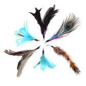 6PCS Luxury Dancer Interactive Mignon doux Plumes de rechange Tail Furry Feather Colorful Kitten Natural Feather Toy Pet Cat Teaser pour Cat Rod Wand