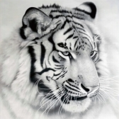 NAIYUE 12 * 12 inches / 30 * 30cm DIY 5D Diamond Painting Kit White Tiger Pattern Rhinestone Mosaic Embroidery Cross Stitch Craft Home Wall Decor