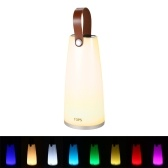 Portable USB Rechargeable LED RGB Handheld Lantern Light