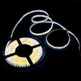 3528 SMD LED Strip époxy Guirlandes lumineuses Etanche 600LED 5M 12V