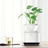 Épurateur d'air purificateur écologique de bureau micro